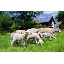Síť pro eletrické ohradníky na ovce EasyNet v.105,d 50m,jednoduchá špička